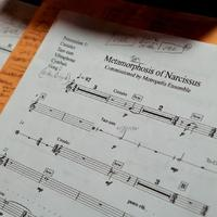 Score to Gity Razaz's The Metamorphosis of Narcissus