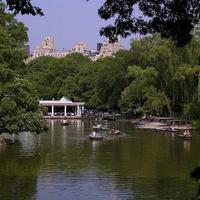 The Boating Lake in Central Park