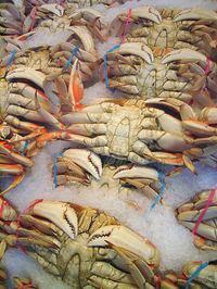 Seafood market: Crabs