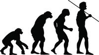 Darwin, Evolution