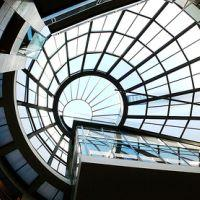Library Glass Ceiling