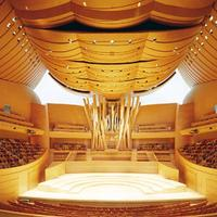 2004 Glatter-Götz/Rosales organ at Walt Disney Concert Hall in Los Angeles, CA