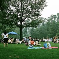The lawn at Tanglewood outdoor music festival