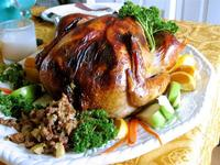 Thanksgiving turkey