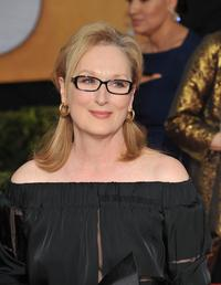 Meryl Streep at the 20th Annual Screen Actors Guild Awards at the Shrine Auditorium