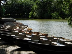 Rowboats assembled for Persephassa