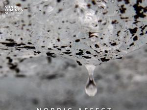 'Nordic Affect: Raindamage'
