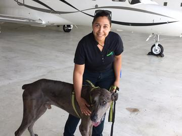 The John and Wendy Neu Family Foundation chartered planes to bring humanitarian aid and animal supplies to Puerto Rico, and return with rescue dogs.