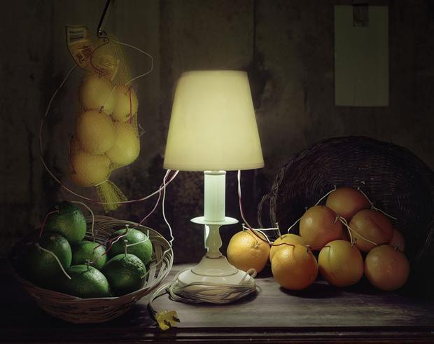 Fruit Battery Still Life (Citrus), 2012 (Caleb Charland)