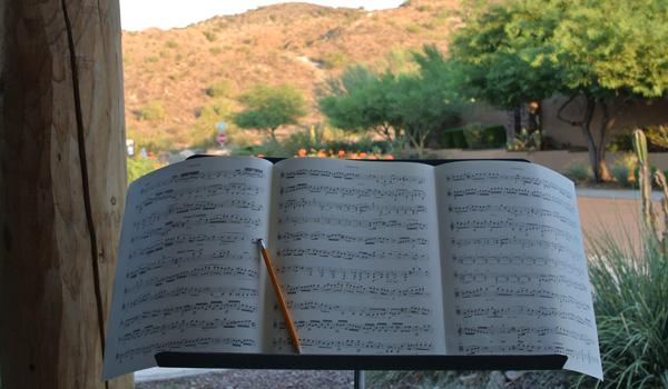 Beethoven and mountain on my porch.