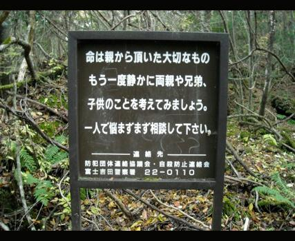 A sign in Aokigahara reads: Your life is a precious gift from your parents. Think about them and the rest of your family. You don't have to suffer alone. Call us 555-22-0110.