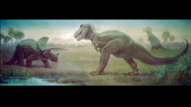 Tyrannosaur and triceratops facing off Field Museum