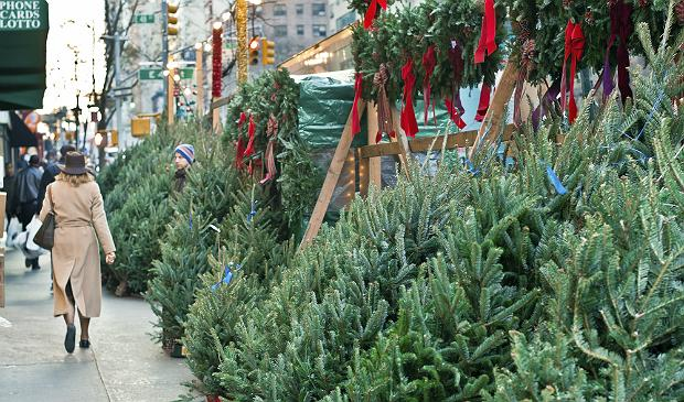 Christmas trees for sale in Manhattan
