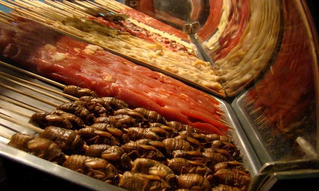 Cicada street snacks in Beijing