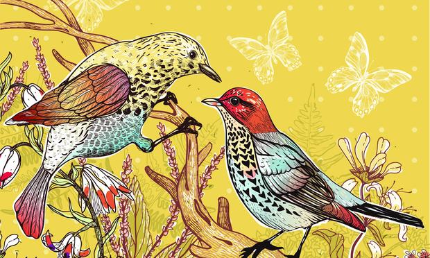 floral illustration of two forest birds and blooming