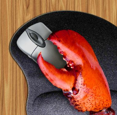 computer mouse lobster claw