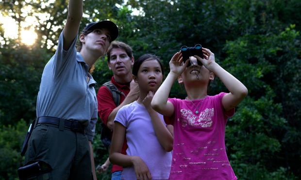 Shirley Wu, 11, catching a glimpse of a red-tailed hawk perched above the camp ground in Central Park.