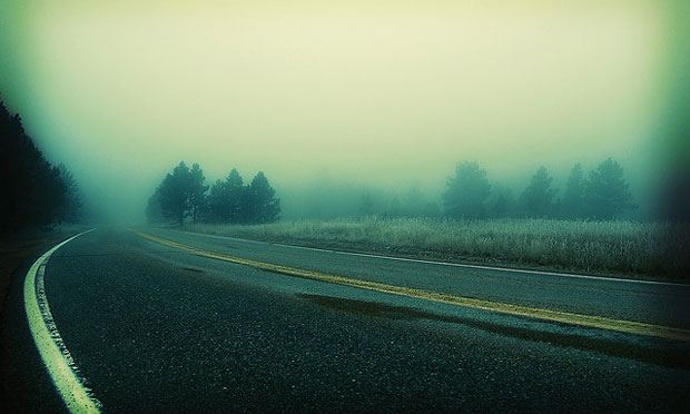 Life Pictures Foggy road
