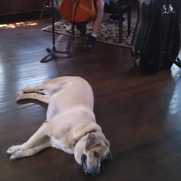 Arabella finds tranquility in a good Bach.