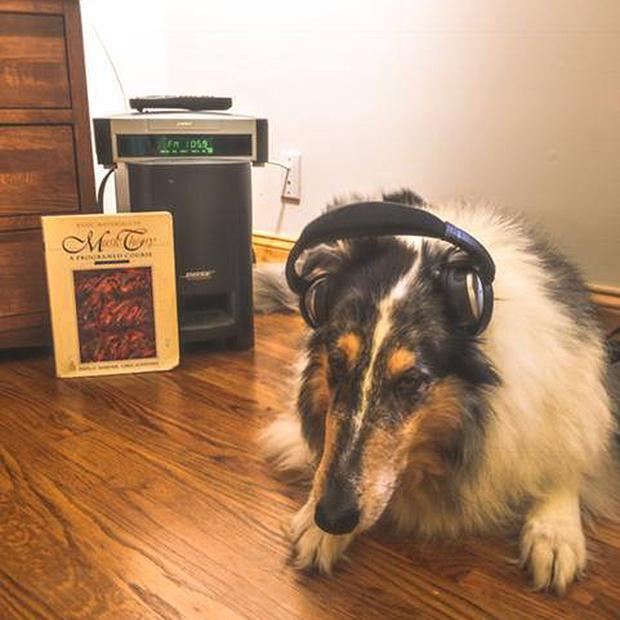 Fergus studying music theory by listening to WQXR.