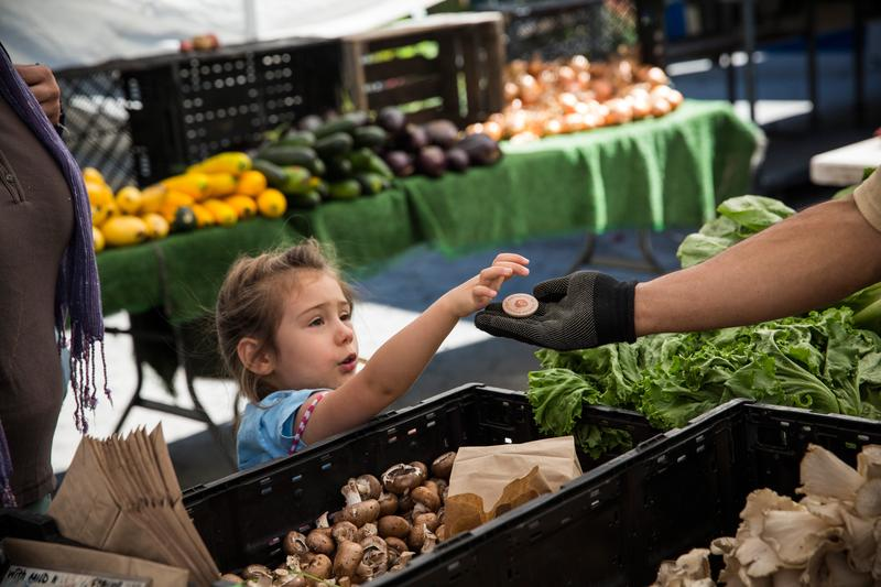 A girl pays for her mother's groceries using Electronic Benefits Transfer (EBT) tokens, more commonly known as Food Stamps, at the GrowNYC Greenmarket in Union Square on September 18, 2013 in NYC.