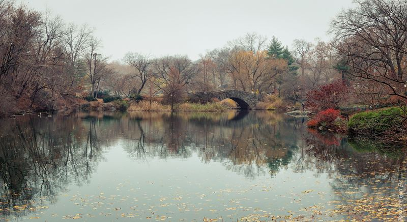Central Park looking more autumn than winter on December 14, 2015.
