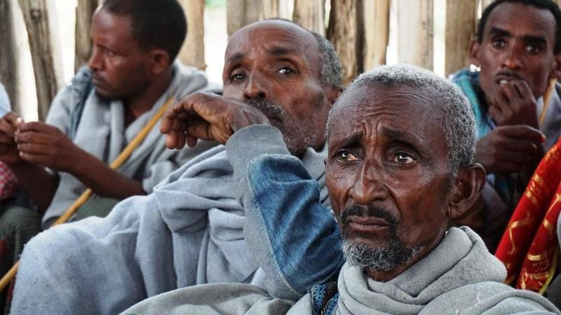 Elder residents of Kobo, Ethiopia who survived the 1984 famine say that the cumulative effects of several bad rainy seasons have made this the worst drought they can remember.