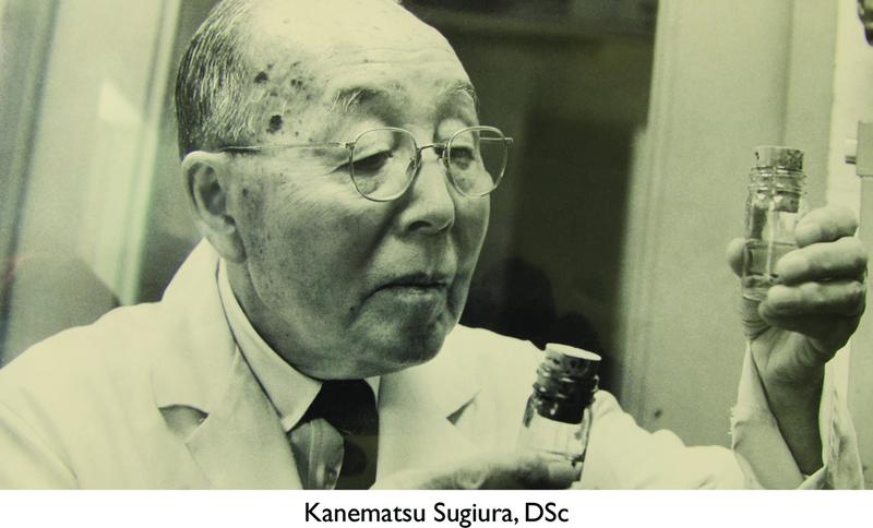 "Kanematsu Sugiura, DSc, was studying ""Laetrile,"" a potential new treatment for cancer, at Memorial Sloan-Kettering Cancer Center in the 1970s."