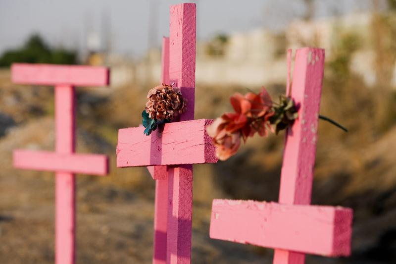Pink wooden crosses are seen in the place where the corpses of eight murdered women were found in 2001, in Ciudad Juarez, state of Chihuahua, north Mexico, on May 28, 2008.