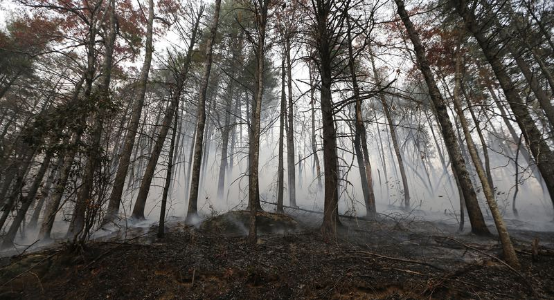 A wildfire smolders after burning a hillside Tuesday, Nov. 15, 2016, in Clayton, Ga. On Tuesday, the Tennessee Valley Authority issued a burn ban on its public lands across Tennessee.