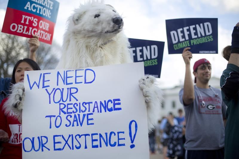 A demonstrator dressed as a polar bear joins others in front of the White House in Washington, Tuesday, March 28, 2017.
