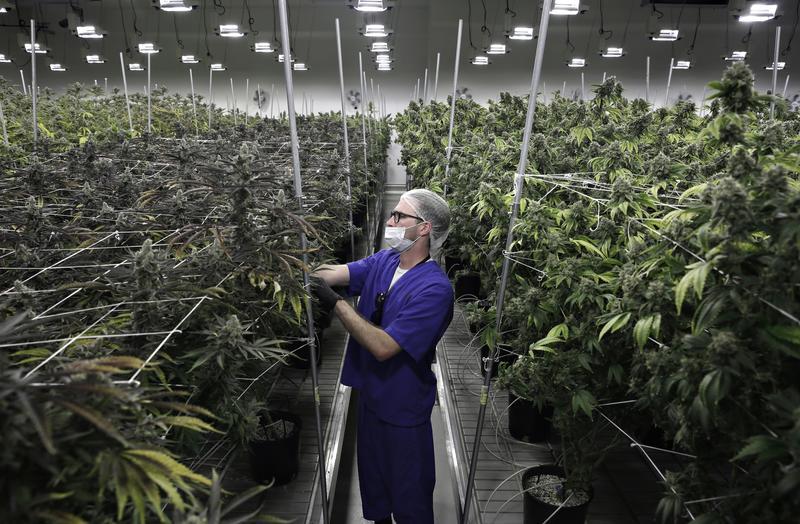 Recreational marijuana sales begin in Sparks