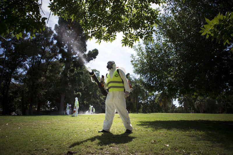 Fumigation in Buenos Aires, Argentina, to control the Aedes aegypti mosquito.