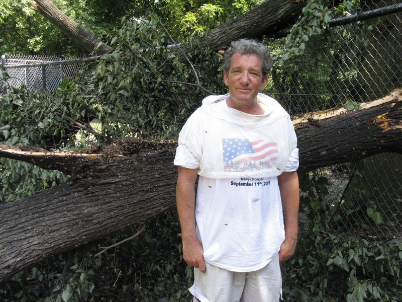Beekeeper Jim Fischer and a fallen bee tree in need of rescuing.