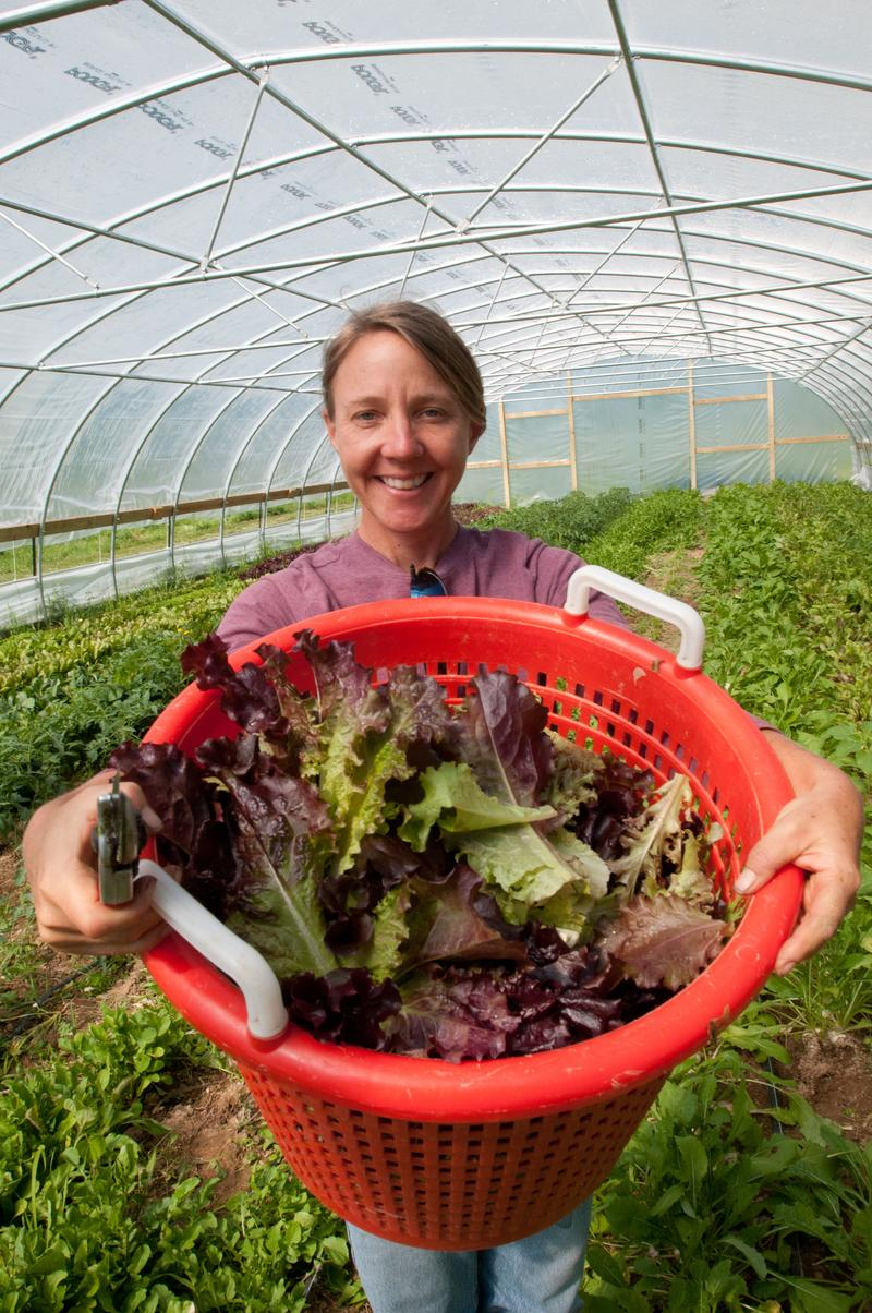 Amy's Organic Garden owner Amy Hicks harvesting greens at her farm in Charles City, VA.