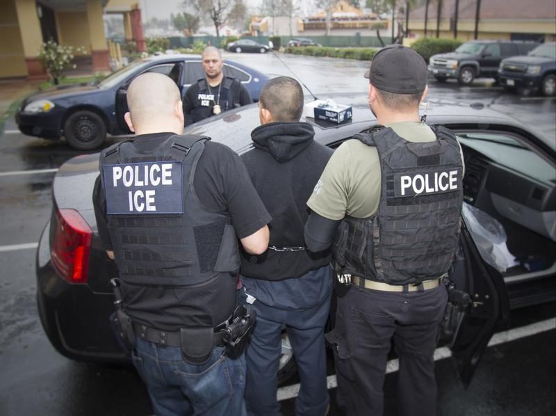 Immigration and Customs Enforcement officers at work.