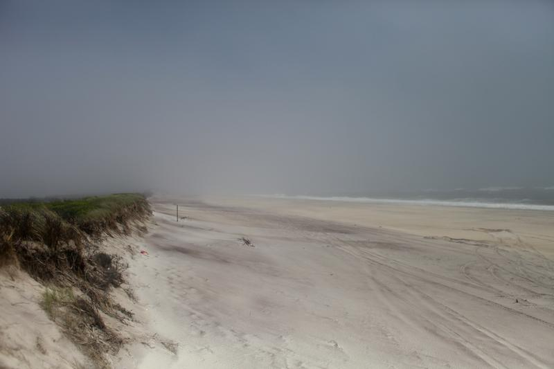 The dunes at the National Seashore on Fire Island were washed back during Sandy