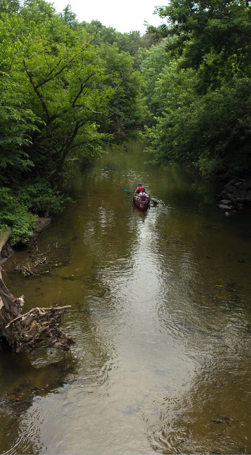 Canoeing on the Bronx River gives a rare glimpse of part of New York that few people--residents or tourists--get to see.