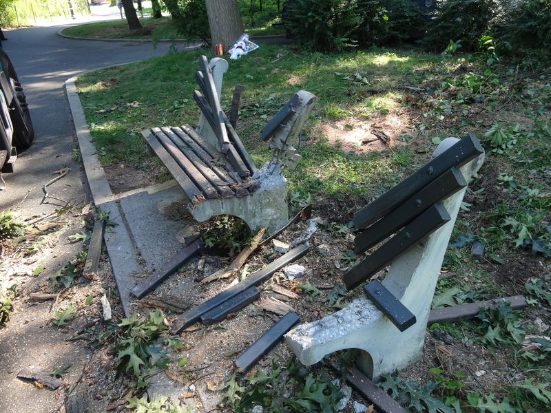 The park bench in Kissena Park where a woman was killed when a tree came fell down on Sunday on Aug. 4, 2013.
