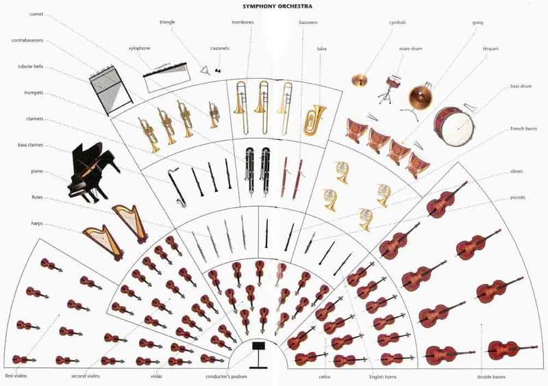 The layout of a Symphony Orchestra