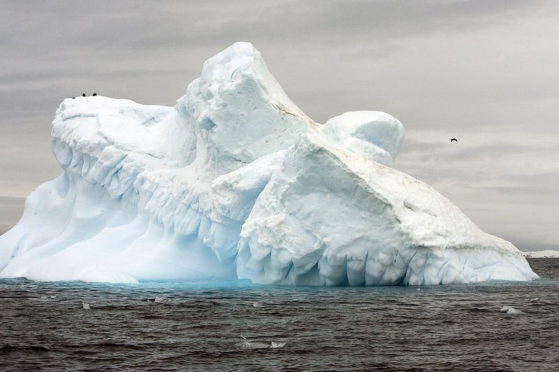 View of the melting Collins Glacier in Antarctica, showing the effects of climate change.