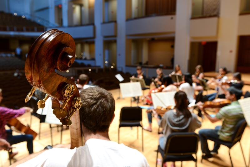 National Orchestral Institute, University of Maryland School of Music