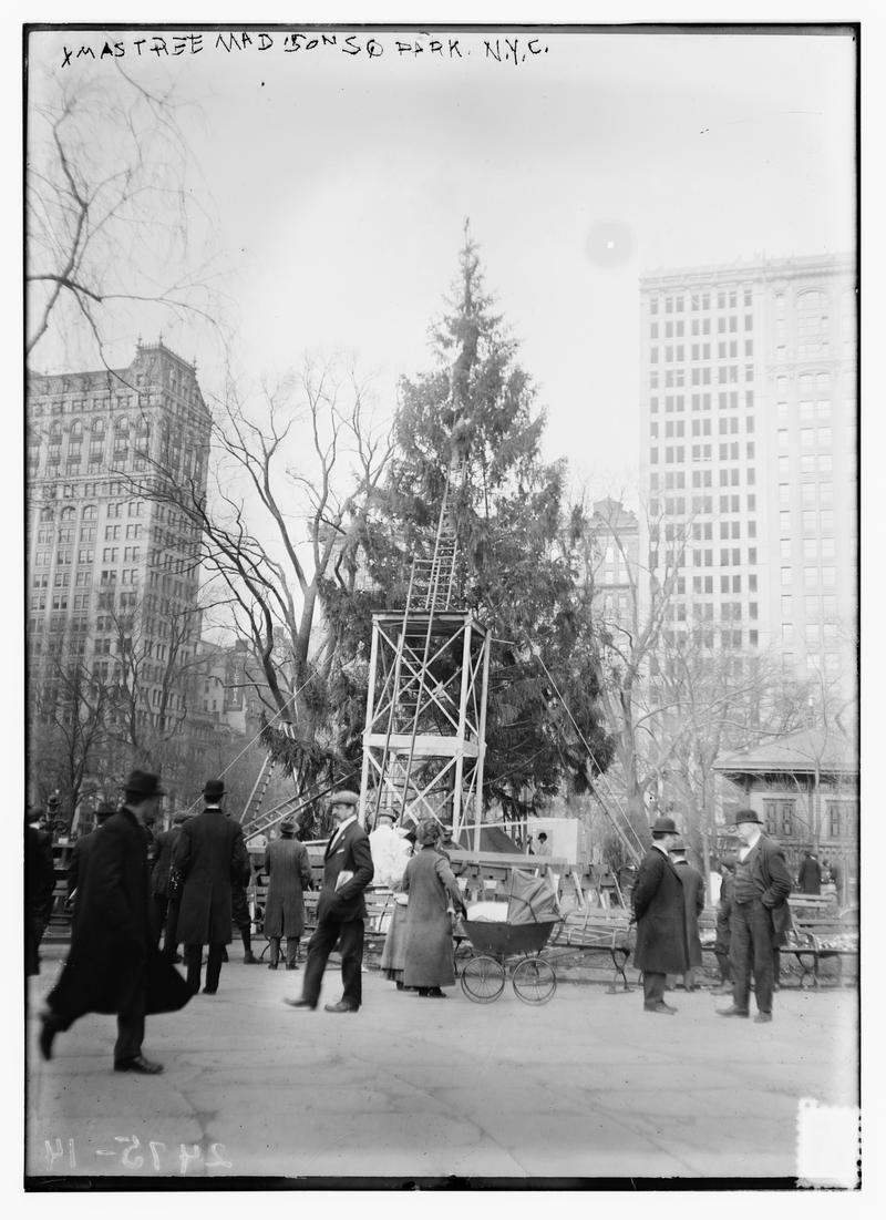 Xmas tree in Madison Sq., N.Y.C., ca. 1911