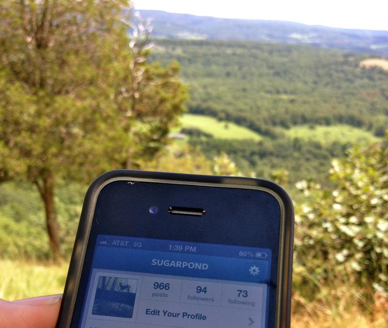 On the Appalachian Trail, the best place to check for a cell signal is an overlook like Cat Rock near Pawling, NY.