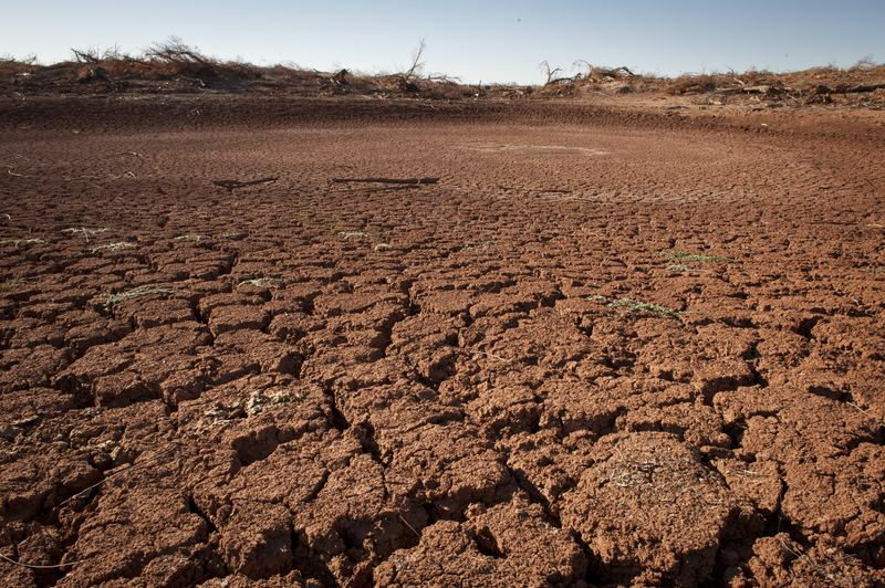 Dry cracked soil due to drought in Texas.