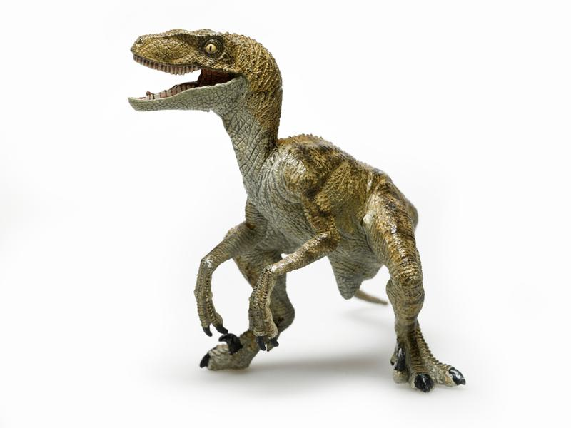 One of the problems with neolution is turning yourself into a Velociraptor.