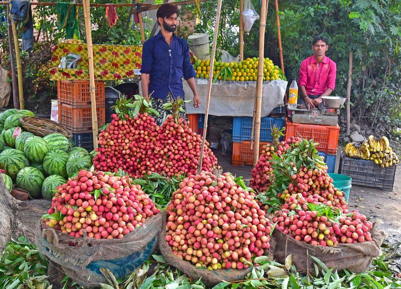 HARIDWAR, UTTARAKHAND, INDIA, JUNE 04, 2016: Roadside vendor of fruits.