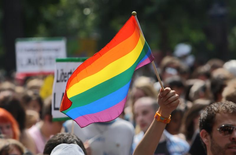 A person waves with the rainbow flag to support gay rights during the Paris Gay Pride parade, on June 26, 2010 in Paris, France.
