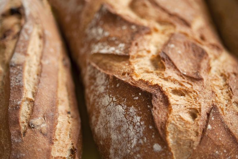 Samuel Fromartz perfected his breadmaking skills and learned all about bread, from seed to flour to the biochemistry of sourdough.