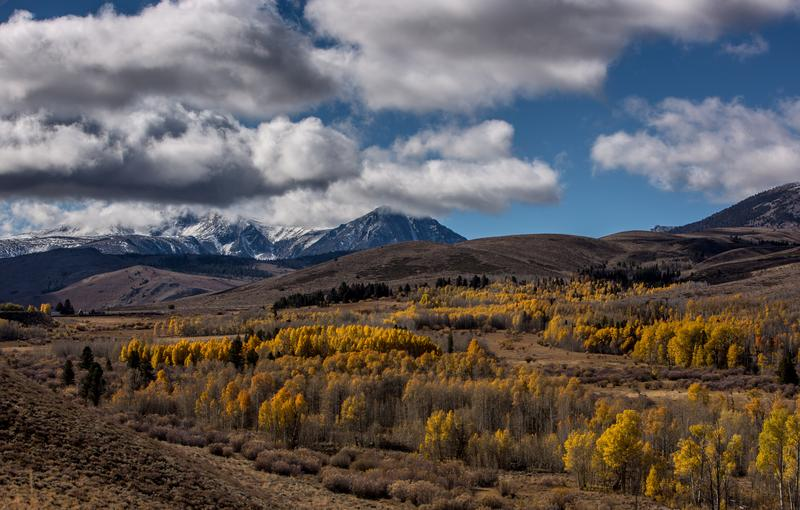 Despite four years of drought, conditions were ripe this week for the return of the fall colors on the eastern flank of the Sierra Nevada Mountain Range.